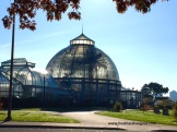 Early morning at Belle Isle Conservatory