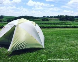 tent_cornfieldIA BLOG